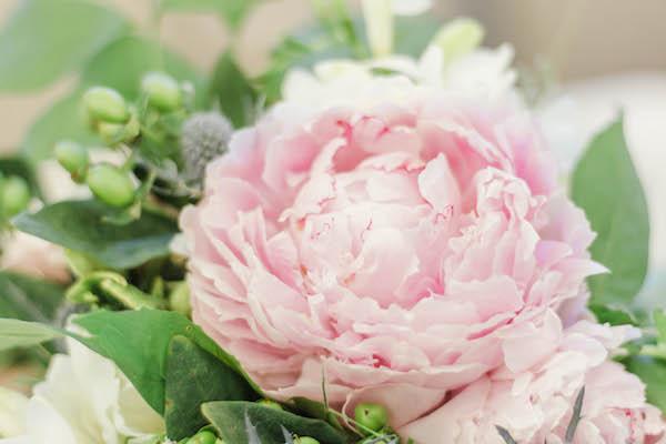 Pink Wedding Peony