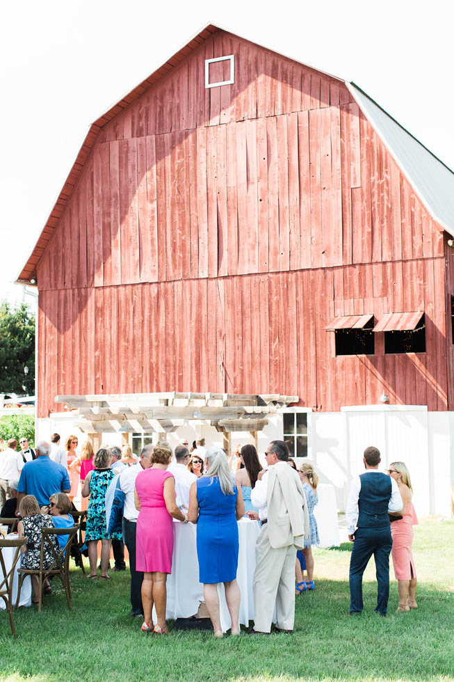 Ciccone Vineyard wedding cocktail hour