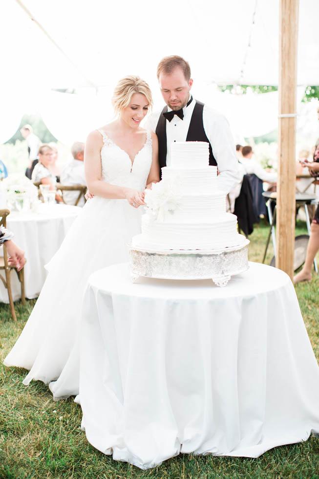 Traverse City wedding cake cutting