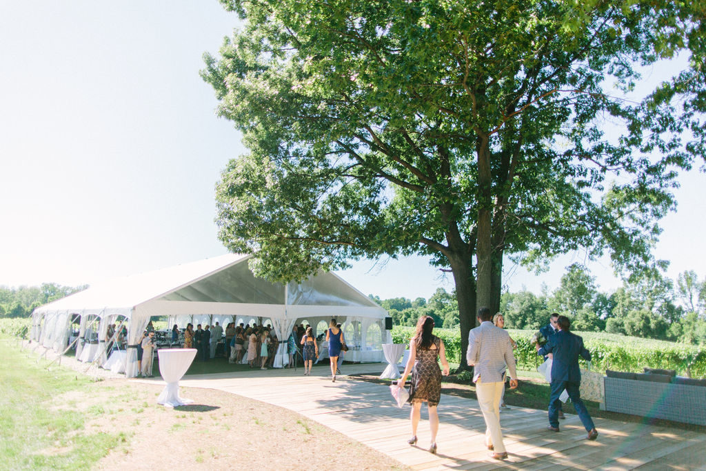 Guests walking into the tent at a 12 corners vineyard wedding
