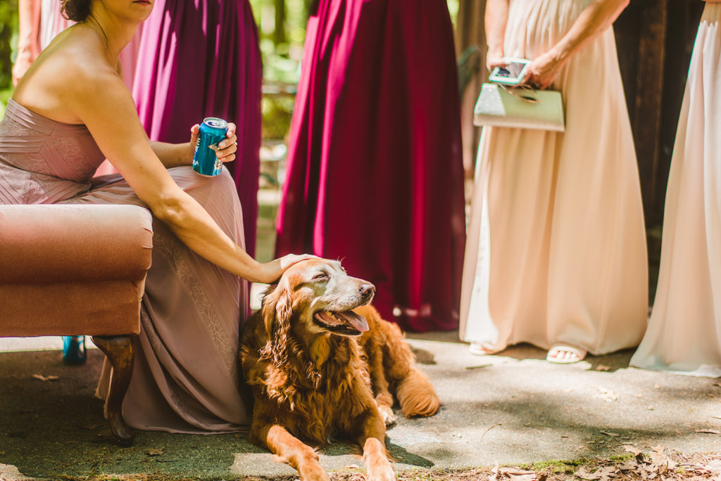 A bridesmaids petting a dog before a wedding ceremony
