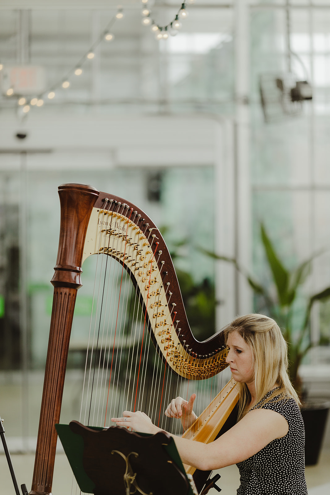 A musician playing before a Grand Rapids, Michigan wedding ceremony