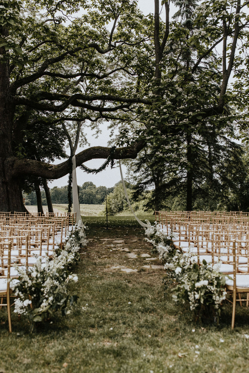 The Hidden Vineyard Wedding Barn ceremony tree.